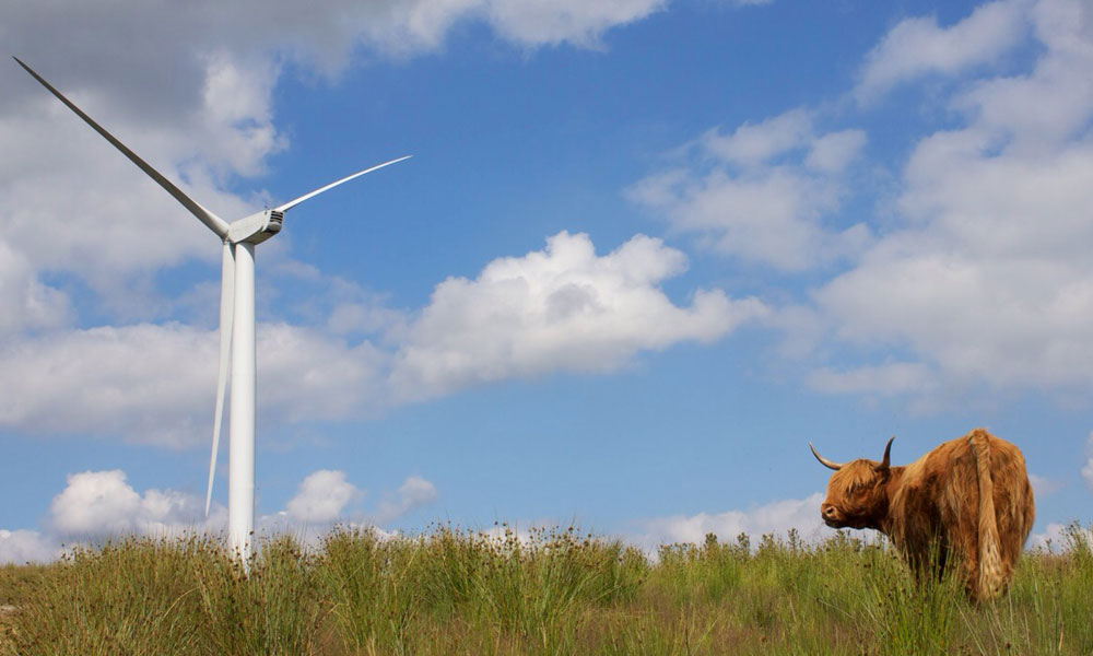 Initiafy - RES wind farm induction case study