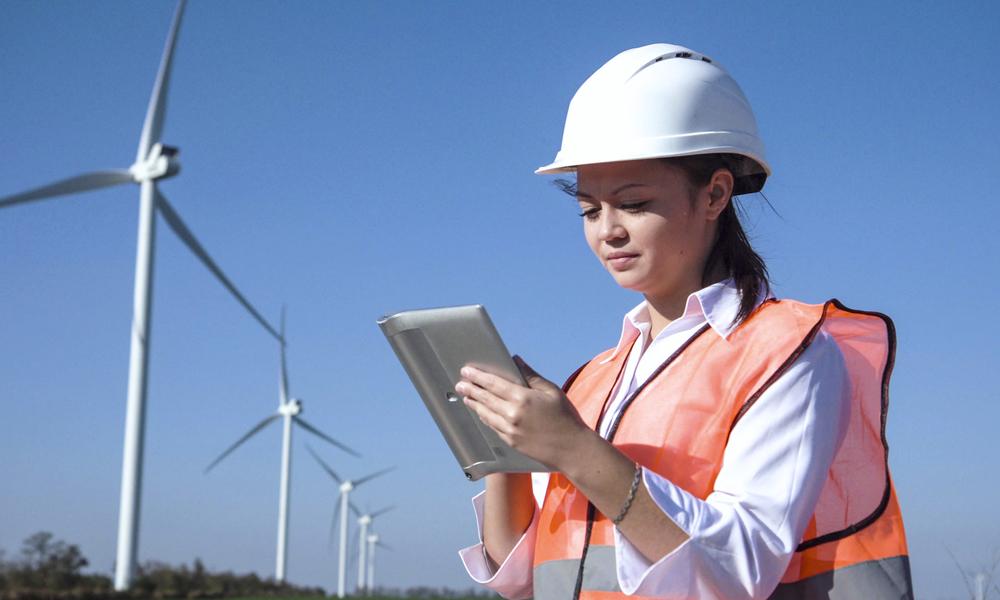 Renewable energy sector